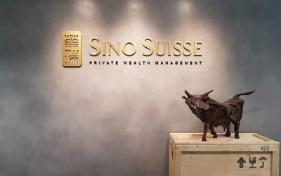 Project @ Sino Suisse